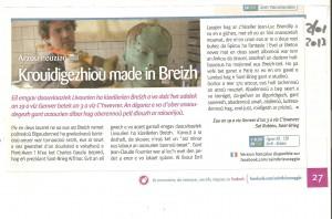 9-saint-brieuc-agglo-2-janvier-2013-article-breton-300x198